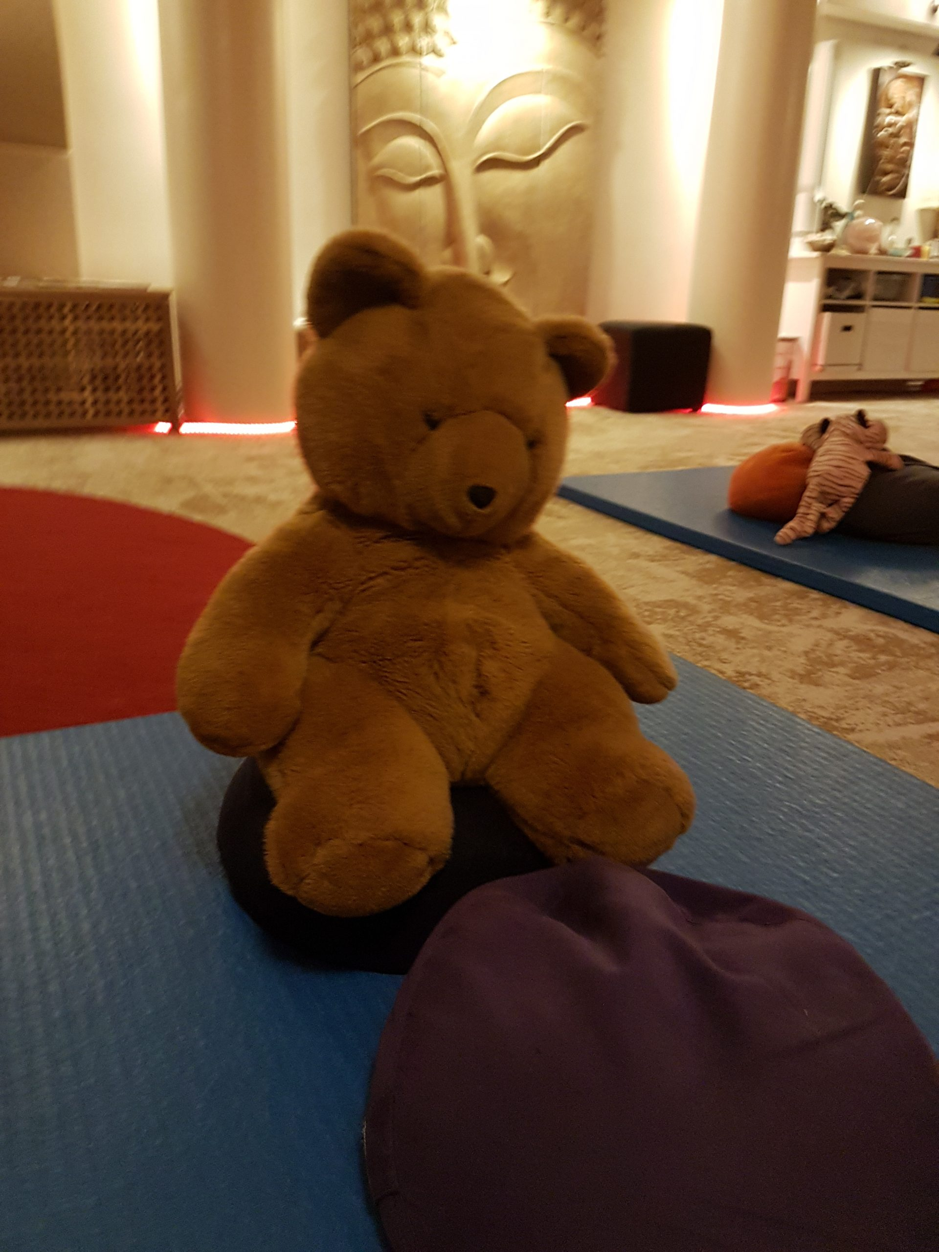Teddy Bear therapy group